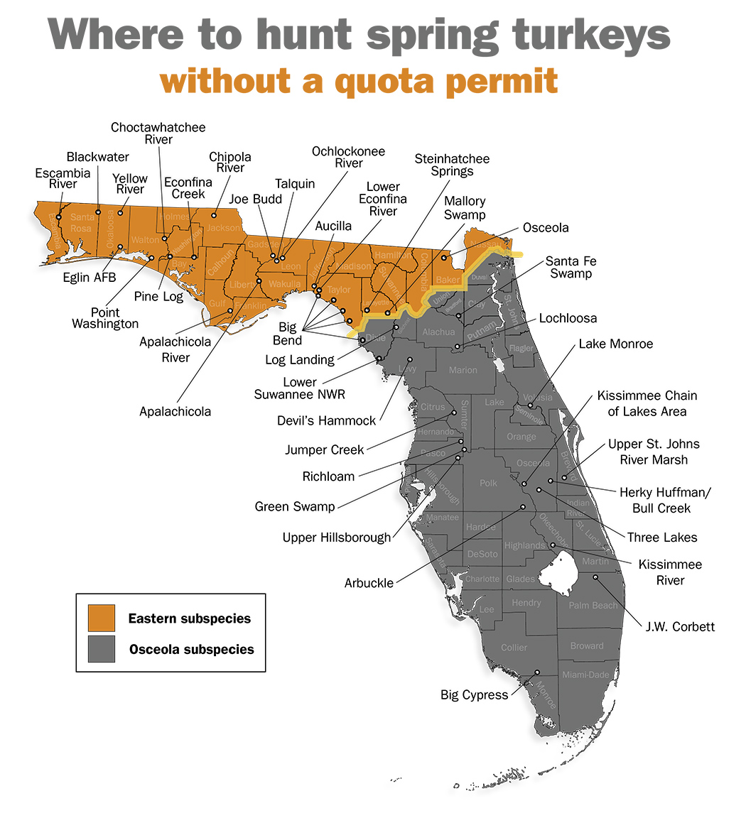 2013 florida spring turkey season wnwpressrelease for Florida hunting and fishing license