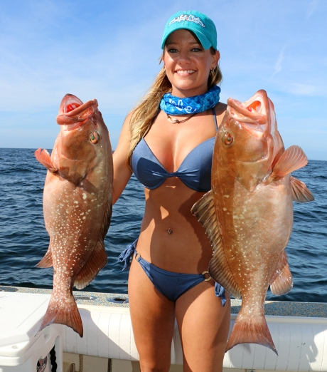 red grouper1