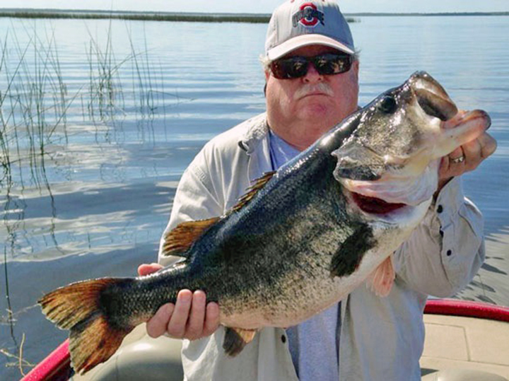 The magnificent seven top 7 largemouth bass caught in for Best bass fishing in florida